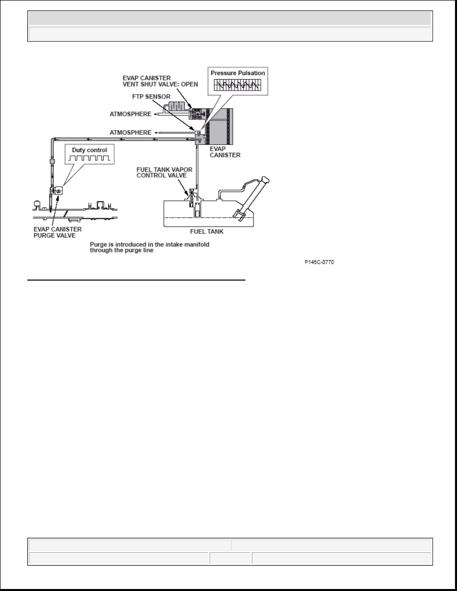 Honda Element Manual Part 66 Evap System Diagram 196 Evaporative Emission